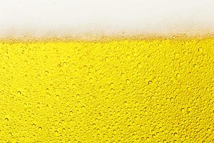 ビールの写真素材 [FYI04753039]