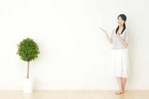 日本人女性の写真素材 [FYI04753127]