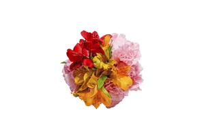 アルストロメリアとカーネーションの花束の写真素材 [FYI04753618]
