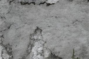 コンクリートの写真素材 [FYI04753778]