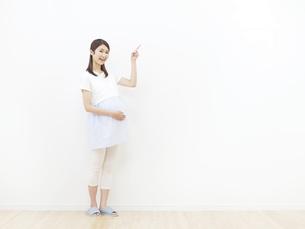 妊婦の写真素材 [FYI04756294]