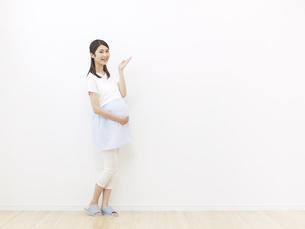 妊婦の写真素材 [FYI04756305]