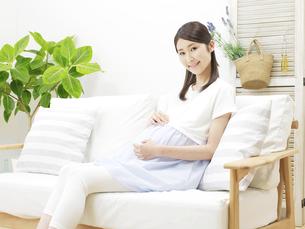 妊婦の写真素材 [FYI04756455]