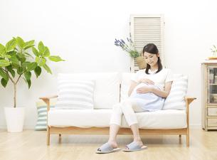 妊婦の写真素材 [FYI04756463]