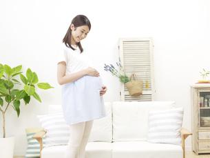 妊婦の写真素材 [FYI04756479]