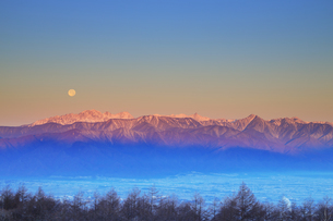高ボッチ高原から望む朝日に染まる穂高連峰と満月の写真素材 [FYI04756609]