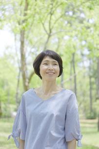 日本人女性の写真素材 [FYI04758151]