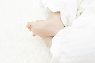 赤ちゃんの足の写真素材 [FYI04758360]