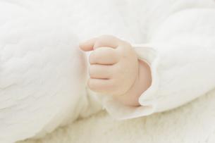 赤ちゃんの手の写真素材 [FYI04758371]