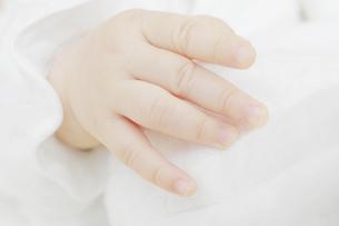赤ちゃんの手の写真素材 [FYI04758392]