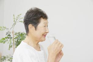 日本人シニア女性の写真素材 [FYI04758706]