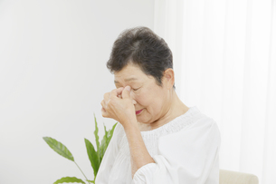 日本人シニア女性の写真素材 [FYI04758739]