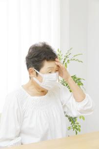 日本人シニア女性の写真素材 [FYI04758764]