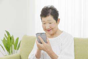 日本人シニア女性の写真素材 [FYI04758794]