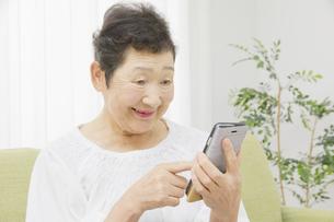 日本人シニア女性の写真素材 [FYI04758796]