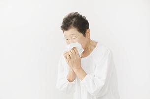 日本人シニア女性の写真素材 [FYI04758911]