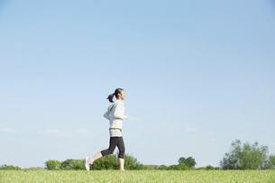 ジョギングをする女性の写真素材 [FYI04759138]