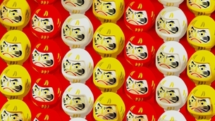 3 colors Daruma dolls on red background. 3D illustration for background.のイラスト素材 [FYI04759394]