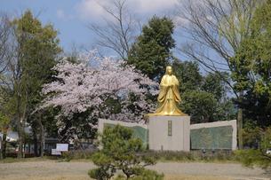 紫式部像と桜の写真素材 [FYI04759520]