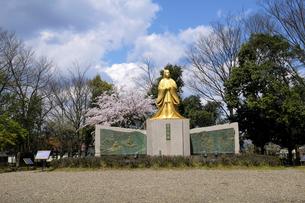 紫式部像と桜の写真素材 [FYI04759526]