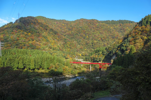 九頭竜峡の紅葉の写真素材 [FYI04759540]