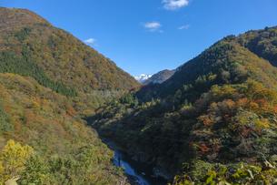 紅葉の山と白山の写真素材 [FYI04759544]
