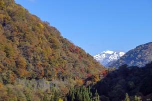 紅葉の山と白山の写真素材 [FYI04759545]