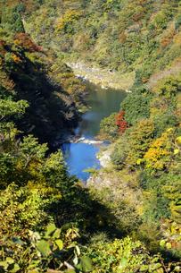 九頭竜峡の紅葉の写真素材 [FYI04759559]