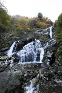 仏御前の滝の写真素材 [FYI04759568]