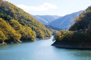 九頭竜湖の紅葉の写真素材 [FYI04759590]