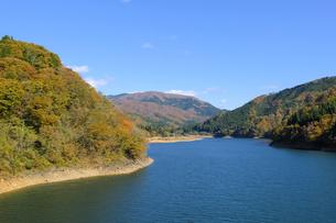 九頭竜湖の紅葉の写真素材 [FYI04759592]