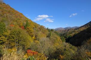 伊勢峠からの山並みの写真素材 [FYI04759601]