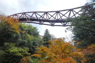 あやとり橋と紅葉の写真素材 [FYI04759639]