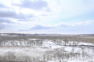 釧路湿原 冬空の写真素材 [FYI04759674]