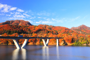 秋の八ッ場ダムと紅葉に丸岩大橋の写真素材 [FYI04759820]