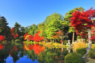 秋の金沢兼六園 ことじ灯籠に霞ヶ池と紅葉の写真素材 [FYI04759824]