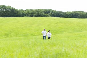 草原を歩くカップルの写真素材 [FYI04760293]