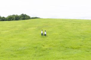 草原を歩くカップルの写真素材 [FYI04760328]