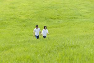 草原を歩くカップルの写真素材 [FYI04760329]