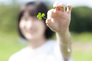 草原で四つ葉を見せる女性の手元の写真素材 [FYI04760425]