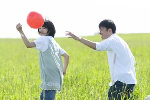 草原で遊ぶカップルの写真素材 [FYI04760454]