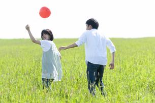 草原で遊ぶカップルの写真素材 [FYI04760455]