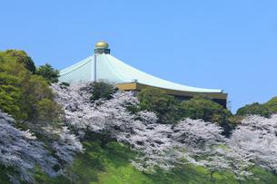 武道館の桜の写真素材 [FYI04760545]