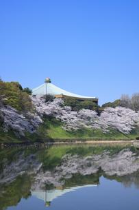 武道館の桜の写真素材 [FYI04760547]