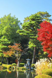 秋の金沢兼六園 ことじ灯籠に霞ヶ池と紅葉の写真素材 [FYI04760676]