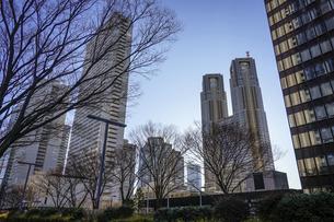 青空に映える都庁を中心に西新宿高層ビル街の写真素材 [FYI04760909]
