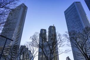 青空に映える都庁を中心に西新宿高層ビル街の写真素材 [FYI04760911]