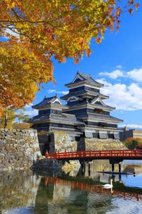 紅葉の松本城の写真素材 [FYI04760928]