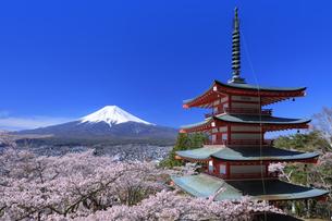 新倉山浅間公園の忠霊塔と桜と富士山の写真素材 [FYI04760930]