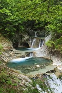 西沢渓谷の七ツ釜五段の滝の写真素材 [FYI04760953]